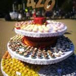 Lazdijams 420